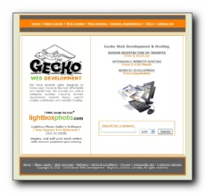 Gecko Web Development - We have several plans designed to make your move to the web affordable and hassle free. We provide you with a complete solution including domain registration, website design and website hosting. Our team consists of a professional group of dedicated individuals that are committed to providing our customers with quality products and services, whilst maintaining an outstanding level of customer service.